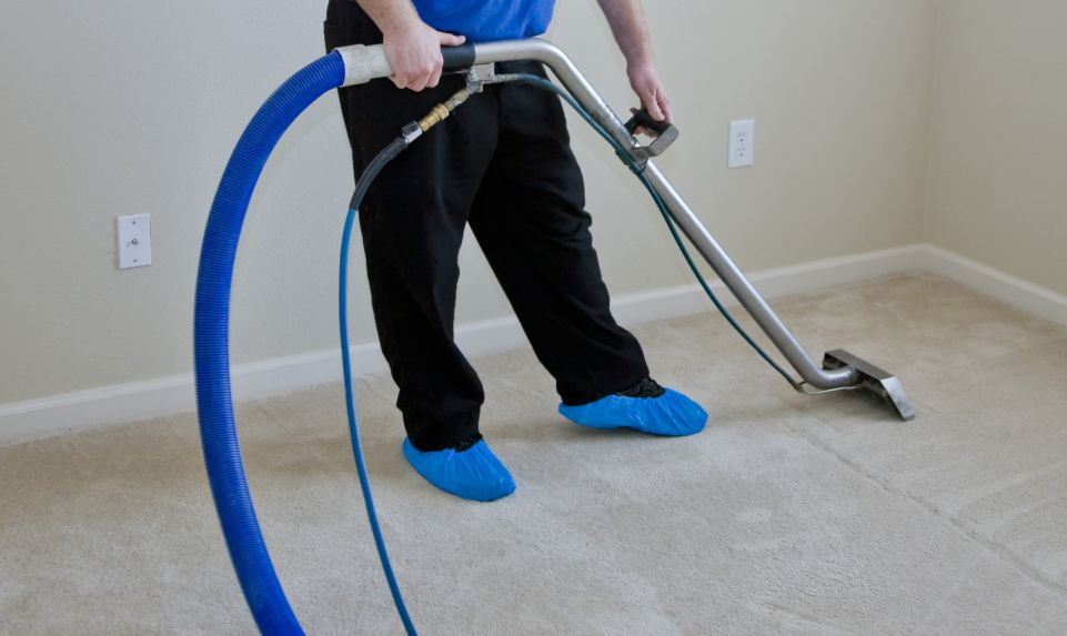 carpet cleaning blue wave comercial cleaning services halifax ns. Black Bedroom Furniture Sets. Home Design Ideas