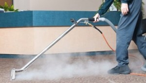 carpet cleaning services halifax