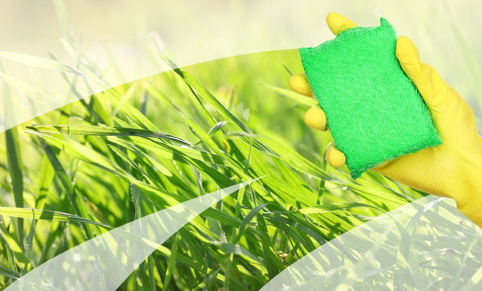 Green Cleaning Services Halifax